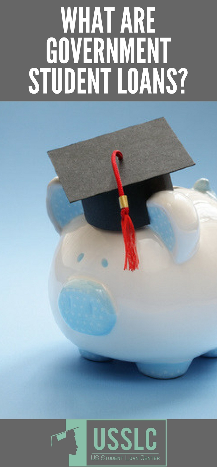 What Are Government Student Loans?